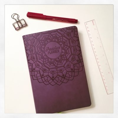 Passion Planner: are you into planners?
